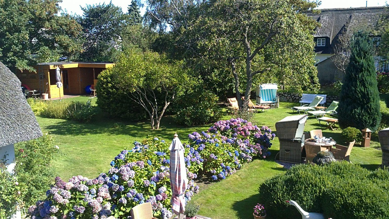 Garten Sept (4)